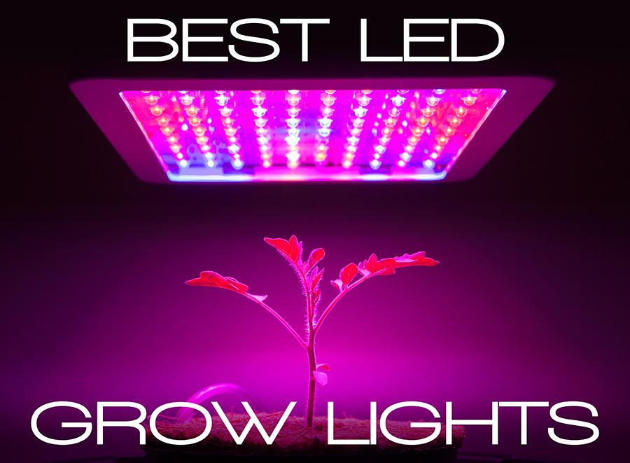 List Of The Best LED Grow Lights Available