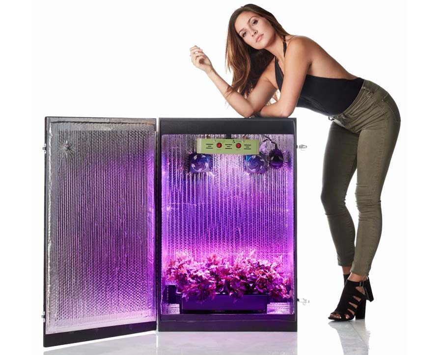 Grow Cabinets [The 6 Best Stealth Grow Boxes for Growing ...