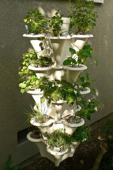 Hydroponic Tower Choose The Best Get Started With Ease