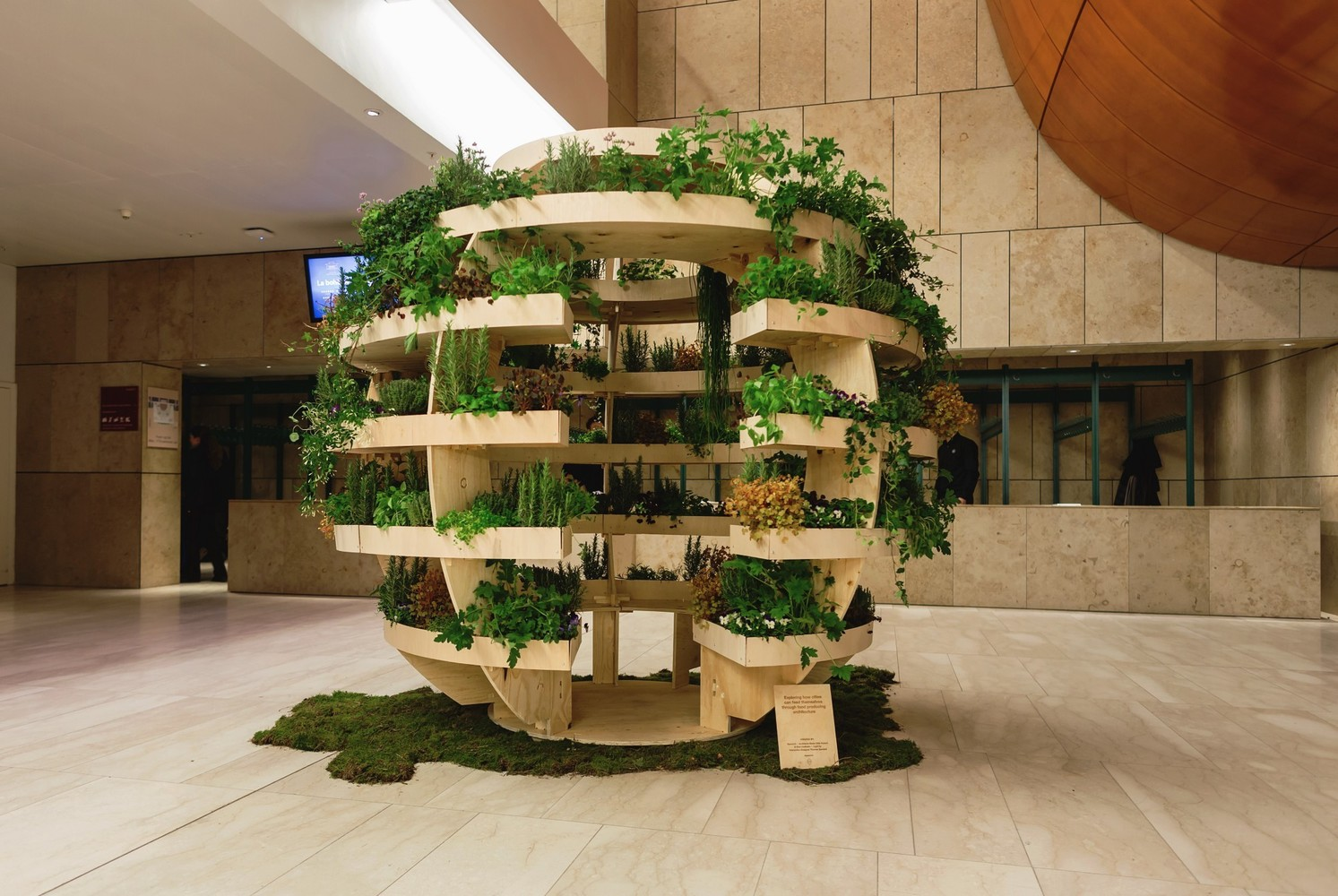 a growroom for hydroponics