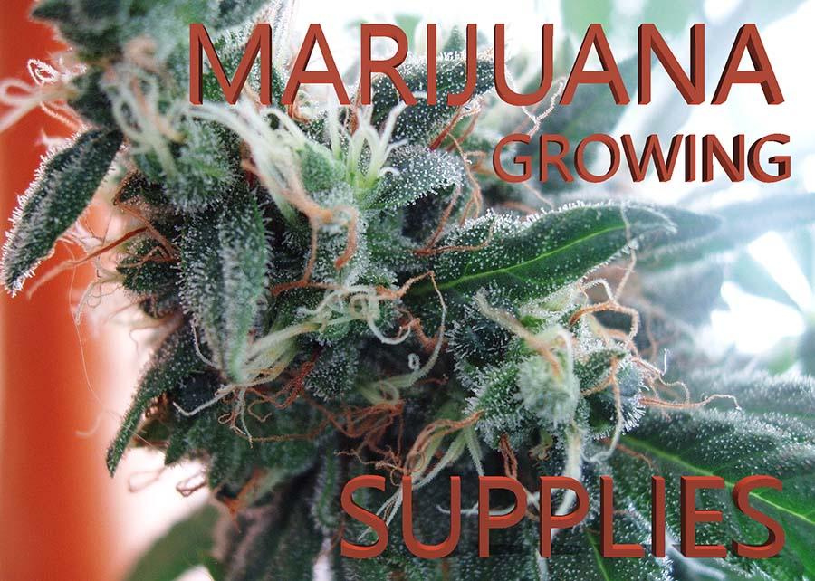 supplies that help in growing cannabis