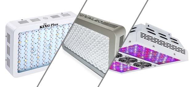 led grow light reviews